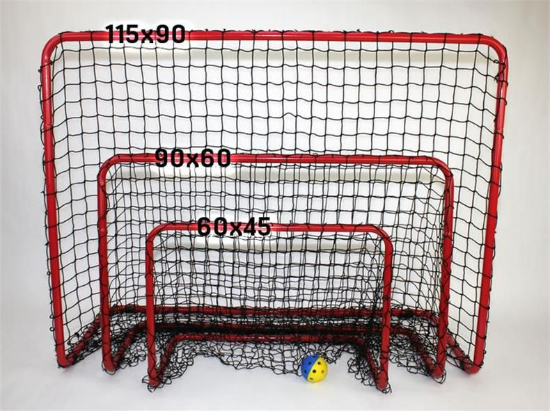 Ice Rink Floorball Rink Board 20x40m or 10x20m